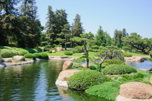 Beautiful view of Japanese Garden in Los Angeles park, California